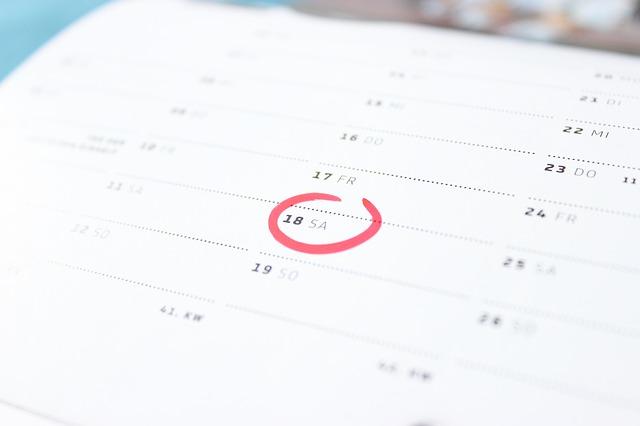 2019 kalender fra Formula Micro
